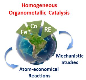 Homogeneous organometallic catalysis.png